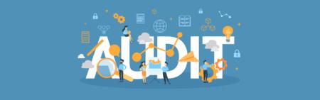 Audit Training Webinar